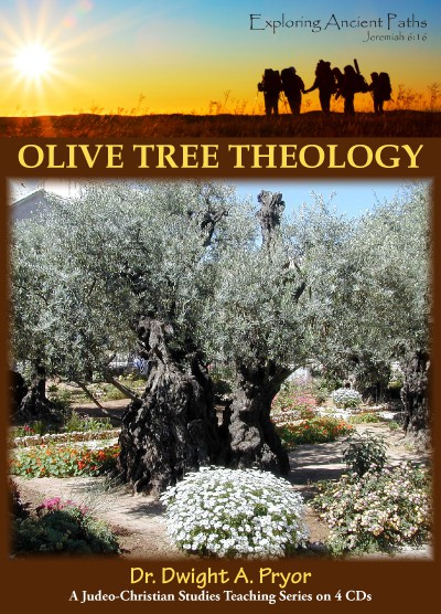 Olive Tree Theology (CD)