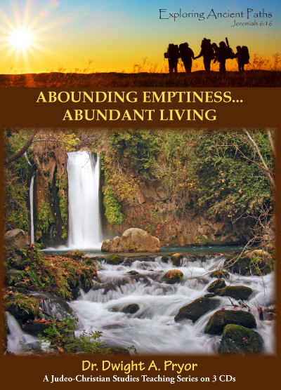Abounding Emptiness, Abundant Living (CD)