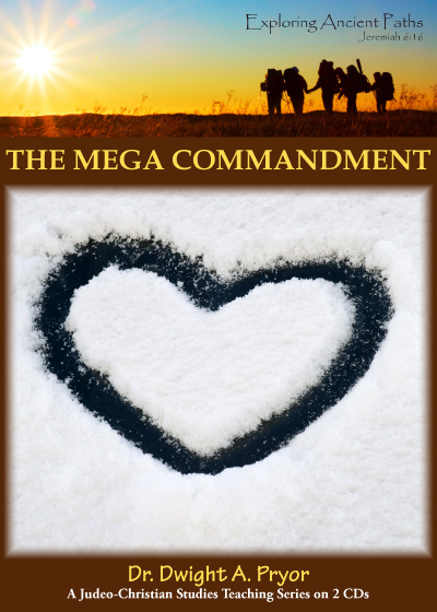 Mega Commandment, The (CD)