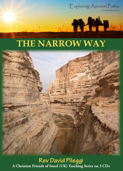 Narrow Way, The (CD)