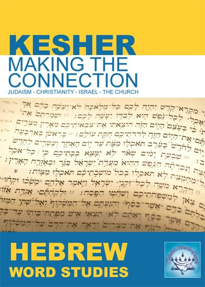 Hebrew Word Studies (DVD)