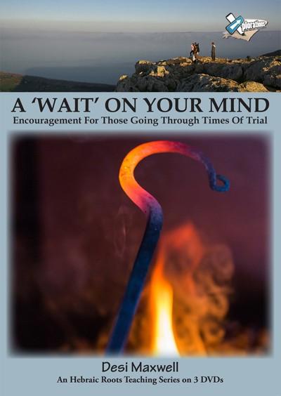 Wait On Your Mind, A (DVD)