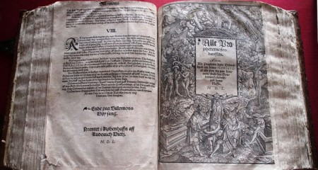 First Bible translated into Danish